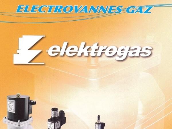 Electrovannes gaz